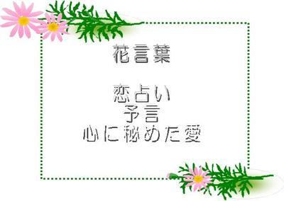 Waku002_4